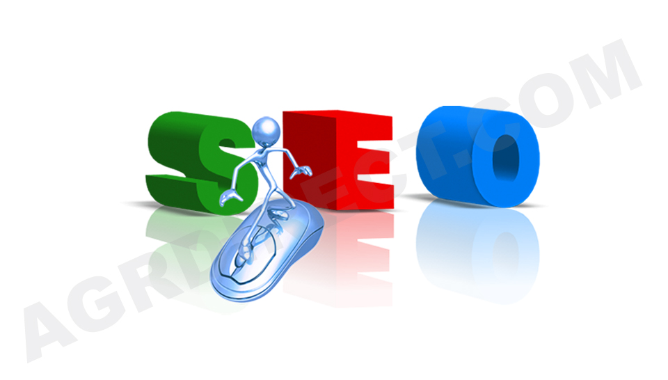 Boost Your SEO Facts