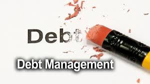 Business Debt Management