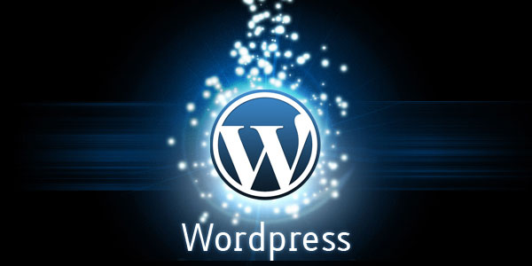 Is It A Good Idea To Pay For Business WordPress Themes?