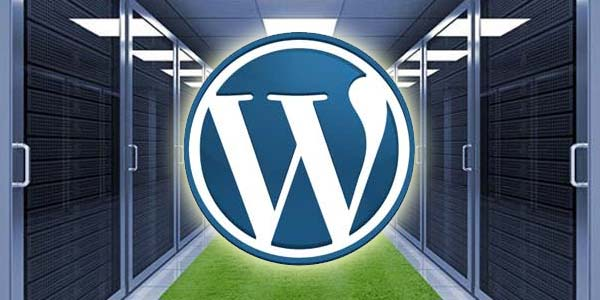 Why Small Businesses Should Prefer WordPress Hosting