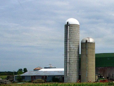 Hints On Starting Up A Small Farm Business