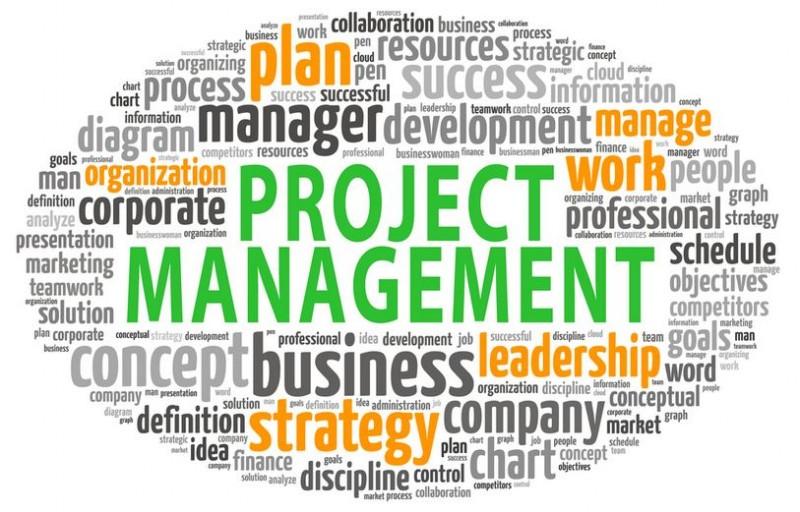 Small Biz Management: 5 Fail-Proof Ideas For An Effective Project Management Program